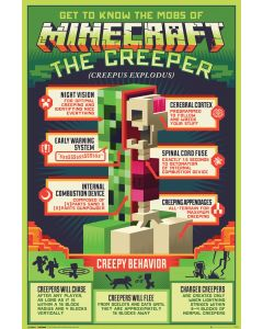 Minecraft Creepy Behaviour Poster 61x91.5cm