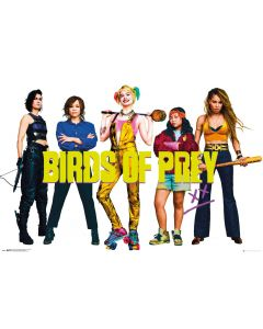 Birds of Prey Group Poster 61x91.5cm