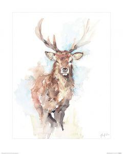 Misty Morning Art Print Jennifer Rose 40x50cm