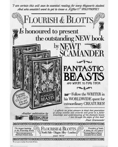Fantastic Beasts 2 Flourish & Blotts Poster 61x91.5cm