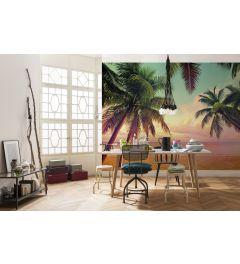 Miami Palmbomen 8-delig Fotobehang 368x254cm