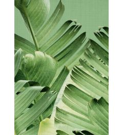 Tropical Leaves 2