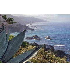 Pacific Ocean Seascape #56
