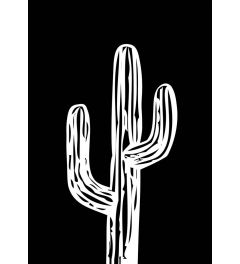 Cactus on Black
