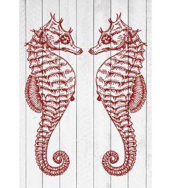 2 Zeepaardjes - Rood