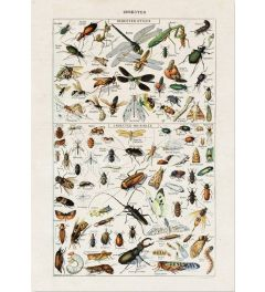 Insecten Kunst