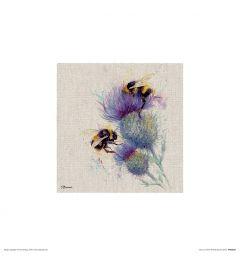 Bijen op distel Art Print Jane Bannon 30x30cm
