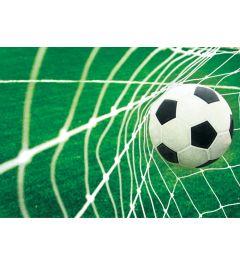 Voetbal Goal 4-delig Fotobehang 368x254cm