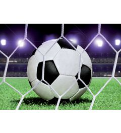 Voetbal 4-delig Fotobehang 368x254cm