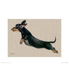 Freddy Art Print Jane Bannon 30x40cm