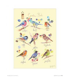 Tuinvogels Art Print Jennifer Rose 30x40cm