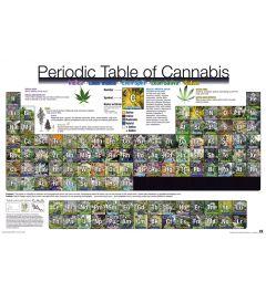 Periodiek Systeem Van Cannabis Poster 91.5x61cm