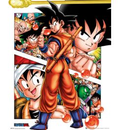 Dragonball Collage Poster 40x50cm