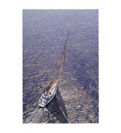 Schip - Silver Sea II