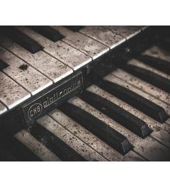 Piano Keys Kunstdruk