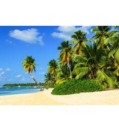 Exotisch Palm Strand 7-delig Fotobehang 350x260cm