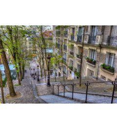 Parijs Montmartre 7-delig Fotobehang 350x260cm