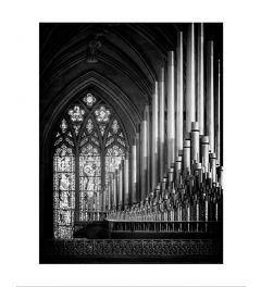Organ Black & White Kunstdruk