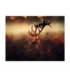 Hert In De Mist Kunstdruk
