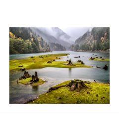 Green River Kunstdruk
