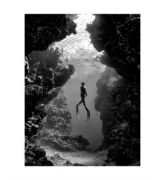 Under The Sea Kunstdruk