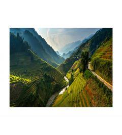 Rice Terraces in Mu Cang Chai Kunstdruk