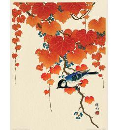 Ohara Koson Bird and Red Ivy Art Print 30x40cm