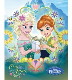 Frozen Anna En Elsa Cadeau Poster 40x50cm