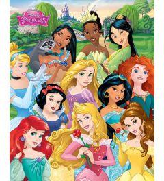 Disney Princess Prinsessen Poster 40x50cm