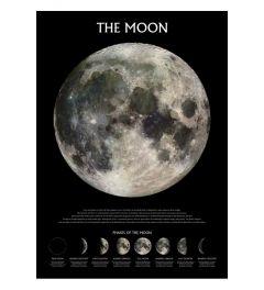 De Maan - Maanstanden
