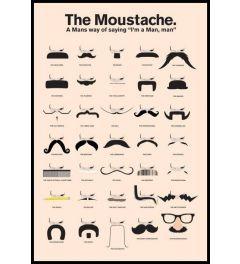 The Moustache - A Man