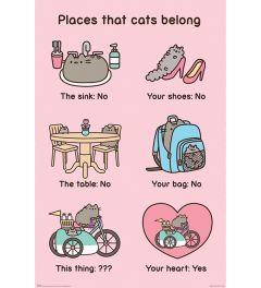 Pusheen Places Cats Belong