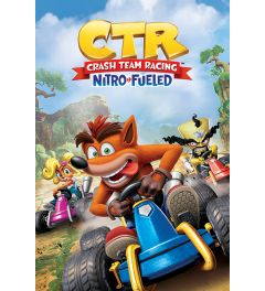 Crash Team Racing Race Poster 61x91.5cm