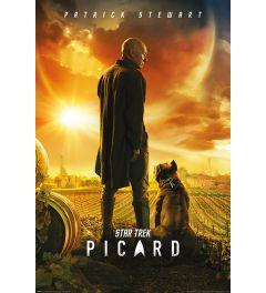 Star Trek Picard Number One Poster 61x91.5cm