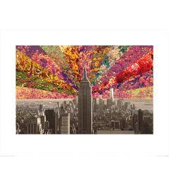 New York - Bloemen