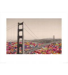 San Francisco - Bloemen