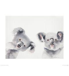 Koala's Art Print Aimee Del Valle 40x50cm