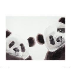 Twee Reuzenpanda's Art Print Aimee Del Valle 40x50cm