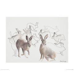 Springende Hazen Art Print Aimee Del Valle 40x50cm