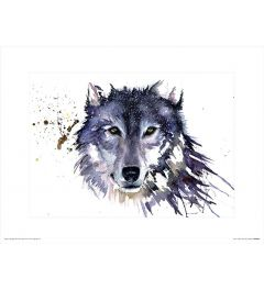 Sneeuw Wolf