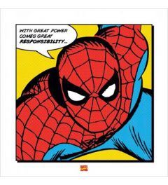 Spiderman - With great Power