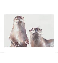 Twee Otters Art Print Aimee Del Valle 60x80cm