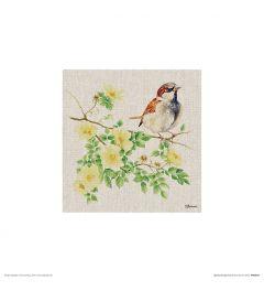 Huismus Art Print Jane Bannon 30x30cm