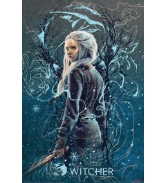 The Witcher Ciri the Swallow Poster 61x91.5cm