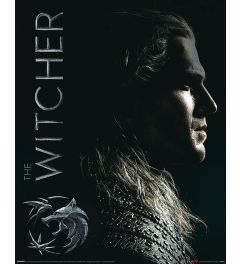 The Witcher Shadows Embrace Poster 40x50cm