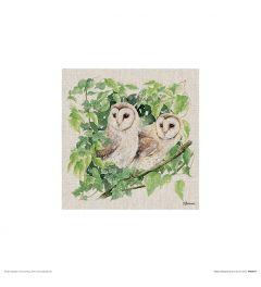 Twee Uilen Art Print Jane Bannon 30x30cm