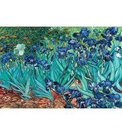 Van Gogh Les Irises Poster 91.5x61cm