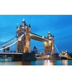 Londen Tower bridge 8-delig Vlies Fotobehang 366x254cm
