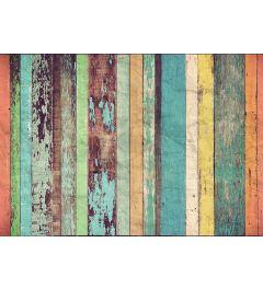 Gekleurde Houten Wand 8-delig Vlies Fotobehang 366x254cm