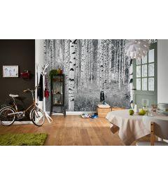 Bos Zwart Wit 4-delig Vlies Fotobehang 368x248cm
